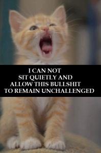 no_bullshit_cat_by_valendale-d6ypz5a